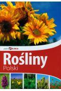 Pi�kna Polska Ro�liny Polski