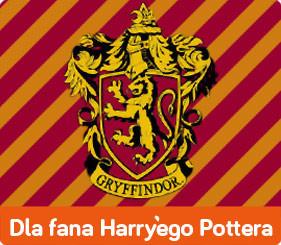 15 książek dla fanów Harry'ego Pottera